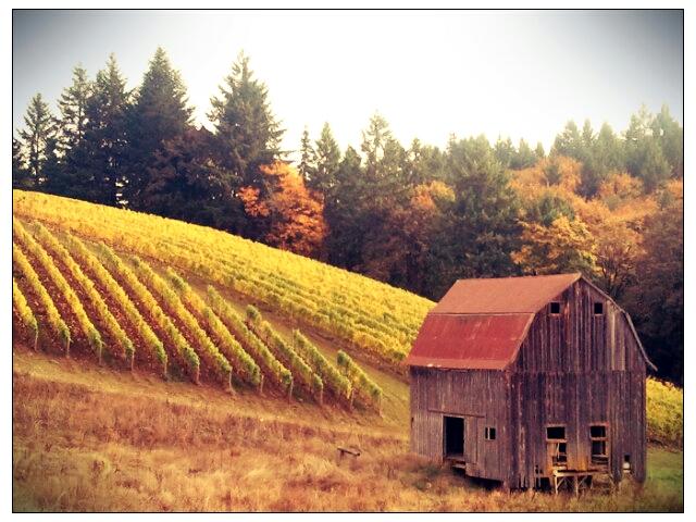 2012-10-26 14.43.37_Anne_Small_Clean